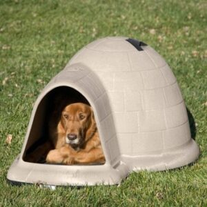 Petmate-indigo-igloo-dog-house-with-microban