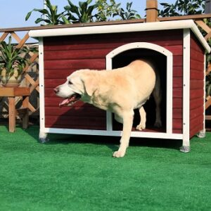 Petsfit-Outdoor-Dog-House