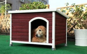 Petsfit-Outdoor-Dog-House-outdoor-installation