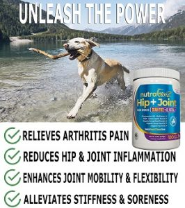 NUTRACHEWZ-grain-free-hip-joint-supplement-for-dogs-reduces-hip-joint-inflamation
